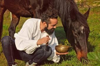 A ló nem gondolkodott azon, hogy ki ez a szakállas ember