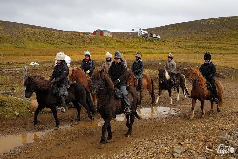 Meleg üdvözlet Jégföldről (2.): lovak és egyéb állatok