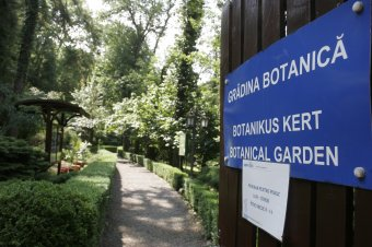 Nagy multú botanikus kert, mégis alig tudunk róla