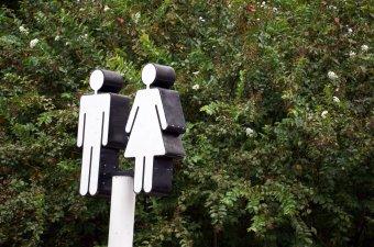 Genderelmélet: az egyenjogúság a cél