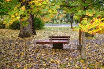 """""""Batyuba szedte rongyait a nyár"""" – őszi hangulatok képekben, versekkel"""
