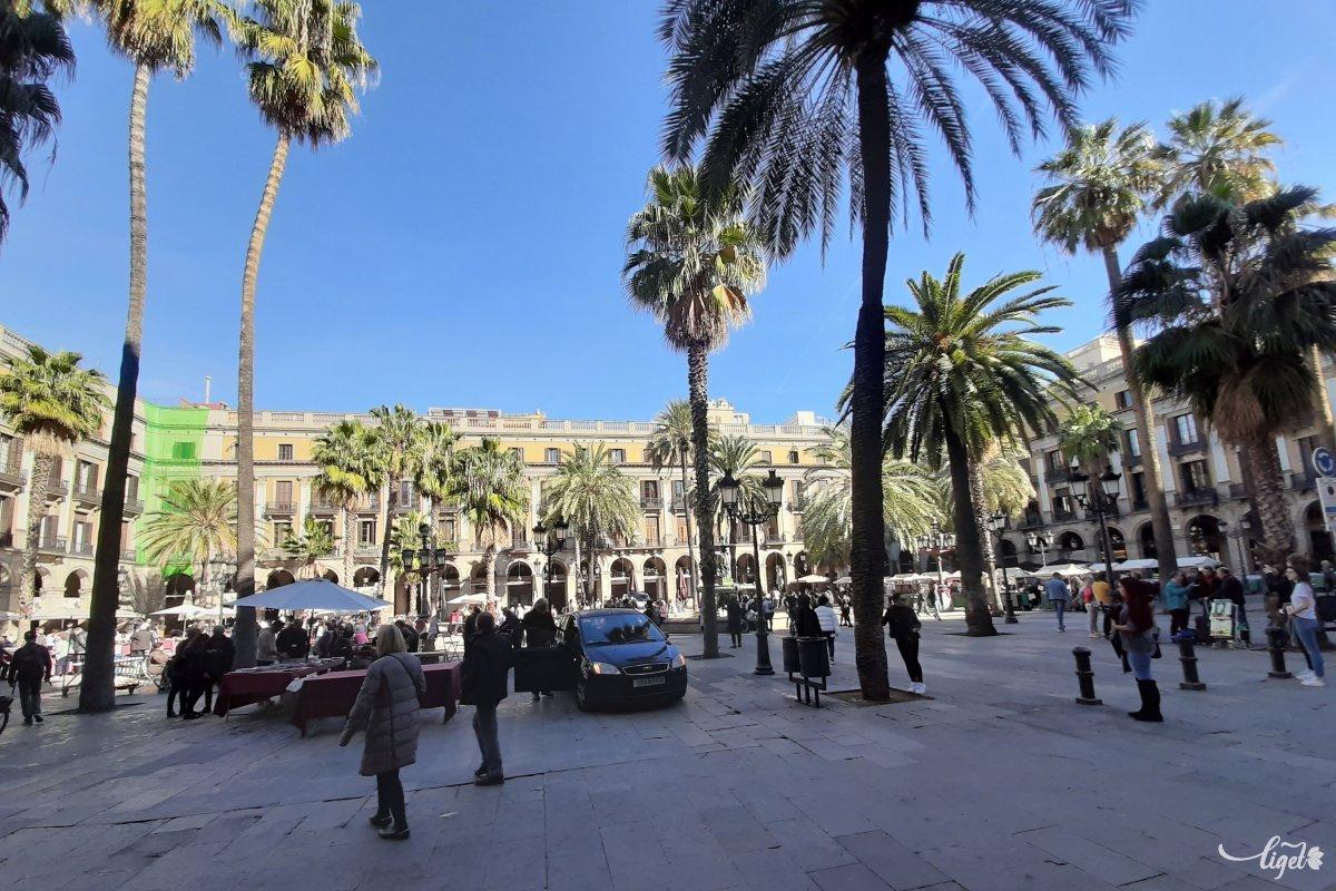 barcelona egyetlen szabadság