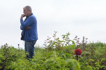 A rózsa gyönyörűségéért. Egy kertész élete