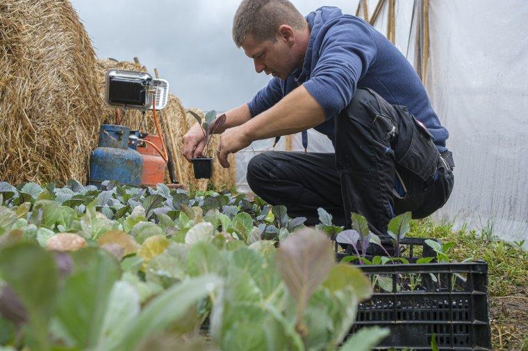 Lépéselőnybe hoznák a családi gazdaságokat: sokat várnak a leendő agrárminisztertől a magyar szakemberek