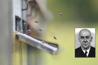 A magyar méhészet atyja volt: 35 éve hunyt el az erdélyi születésű Örösi Pál Zoltán