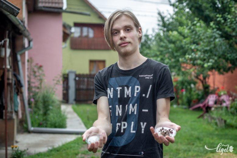 Műanyagzabáló molyok és kukacok: díjazott projekt a nyárikonyhából