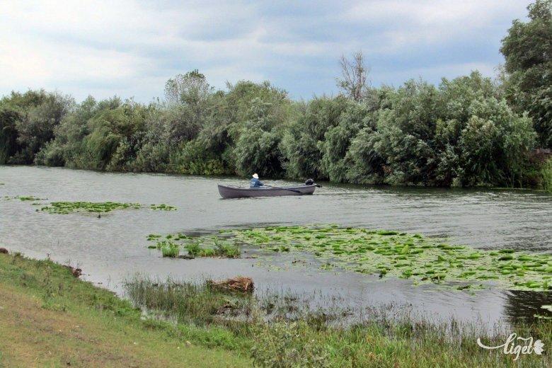 Duna-delta, a romániai szafari: szentgyörgyi benyomások