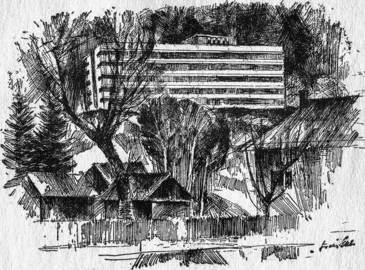 Sövér Elek alkotása (1972) •  Fotó: Forrás: a Csíkszeredai Megyei Sürgősségi Kórház gyűjtése