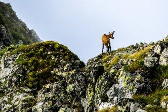 Drónnal a Kárpátokban: a hegyek, ahogy még nem láttad őket