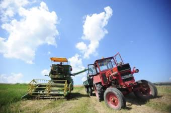 Gazdaoktatástól a mezőgazdasági hitelekig, számos szolgáltatást nyújt erdélyi farmereknek az illyefalvi LAM Alapítvány