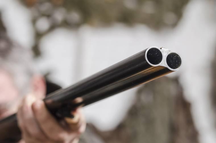 Orvvadászok kerültek rendőrkézre Hargita megyében