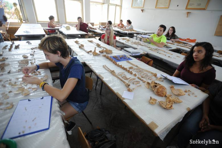 Patakfalván kutatnak a régészek