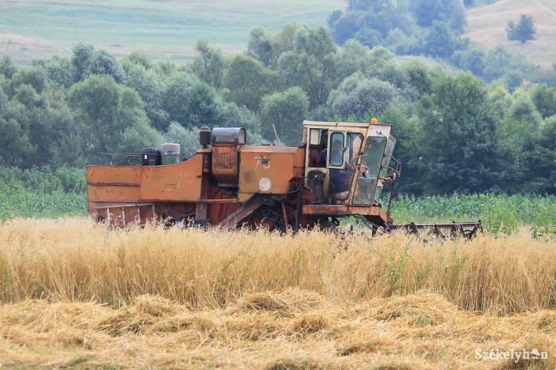Nehézségek után kedvező kilátások a mezőgazdaságban