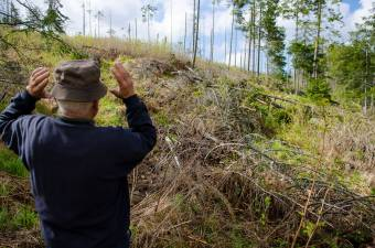 """A """"méregzöld"""" környezetvédelem fejét követelik"""