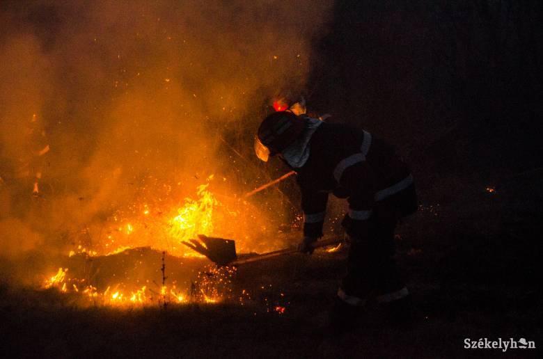 Jókora területen égett a száraz növényzet Csíkszereda határában
