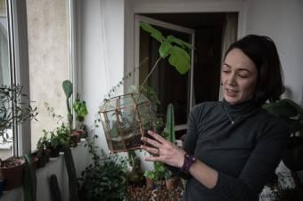Kaktuszvárium a nappaliban, avagy hobbiból lett vállalkozás