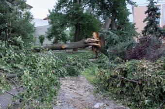 Széllel szemben: több erdélyi megyében be kellett vetni a tűzoltókat