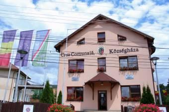 Tízezer lejes perköltséget kell fizetnie Tanasă egyesületének</h2>