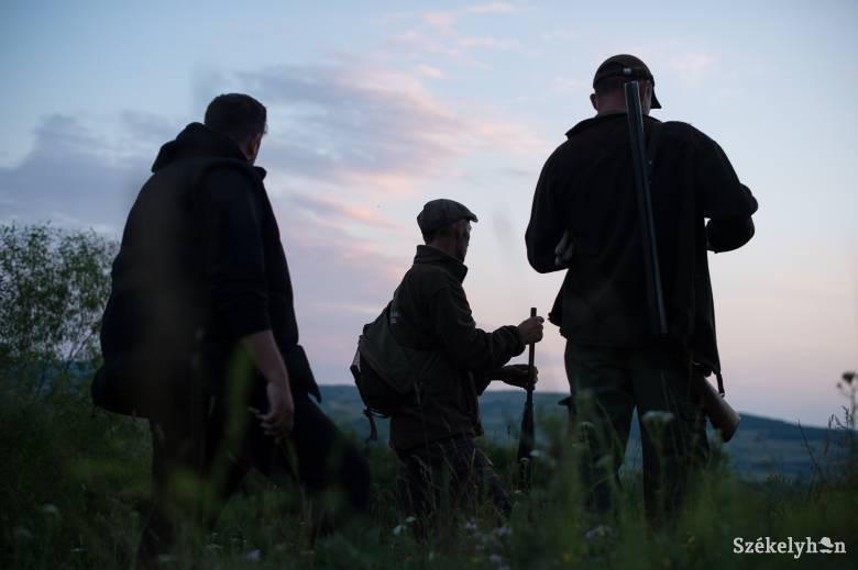 A vadásztársadalmat is megosztotta a Kovászna megyei medvekilövés ügye