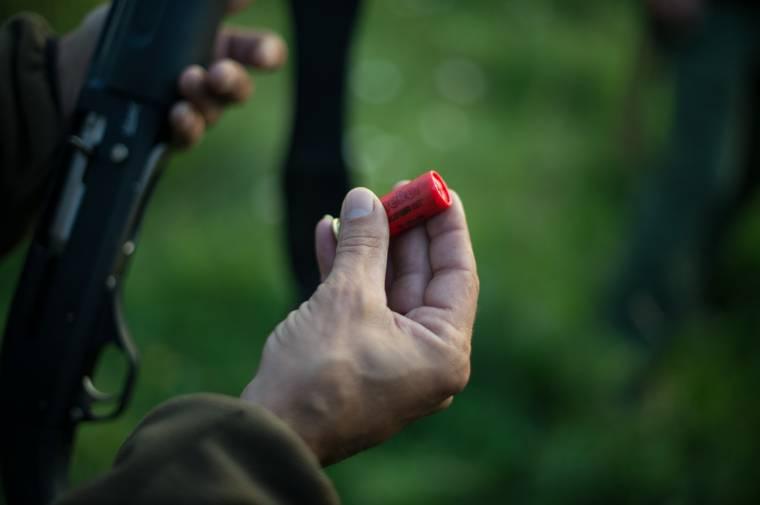 Tánczos Barna: két kivizsgálás is folyamatban van a Kovászna megyében kilőtt medve ügyében