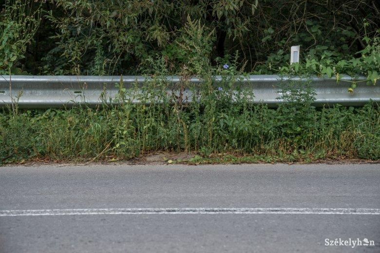 Elkezdődhet az udvarhelyszéki megyei utak javítása