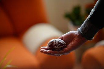 Mézes tojások: húsvétra hangolás karácsonyillattal