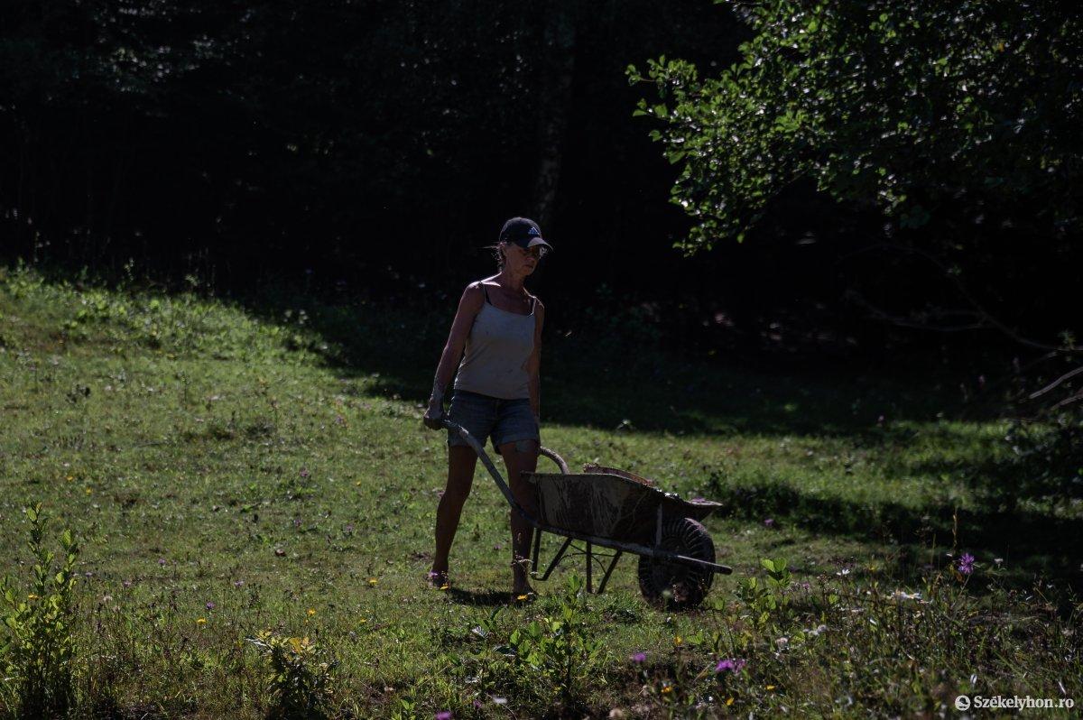 https://media.szekelyhon.ro/pictures/udvarhely/aktualis/2019/05_augusztus/o_onkentes-tabor-remete-ba-18.jpg
