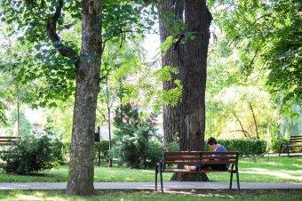 Jövő héttől tilos lesz biciklizni, rollerezni és gördeszkázni Székelyudvarhely parkjaiban