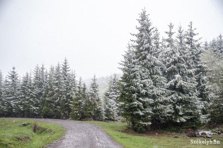 Felerősödő szélre, a hegyvidéken havazásra és hóviharokra figyelmeztetnek