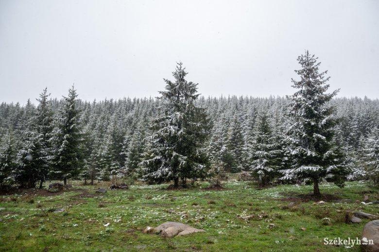Nem tart sokáig a napsütés, felerősödik a szél és havazás is lehet