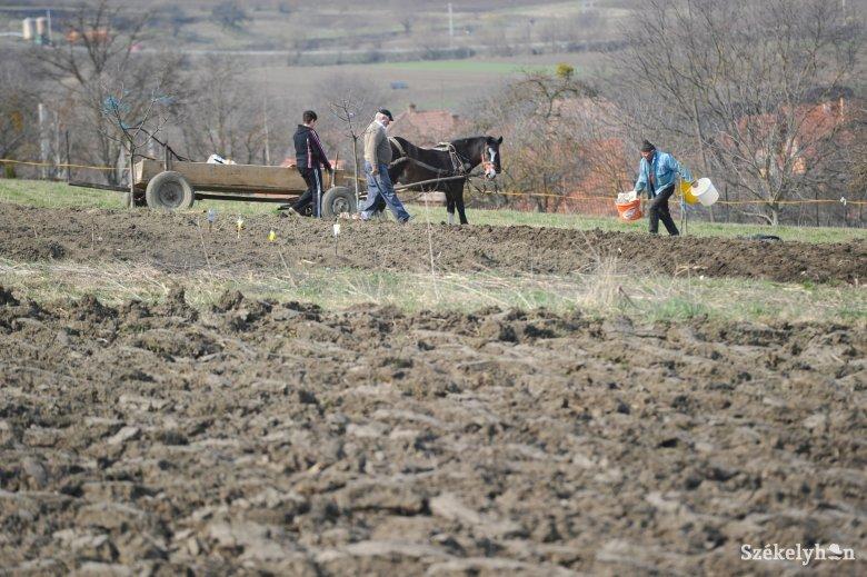 Mezőgazdasági szezonkezdés: ebből még jó lehet