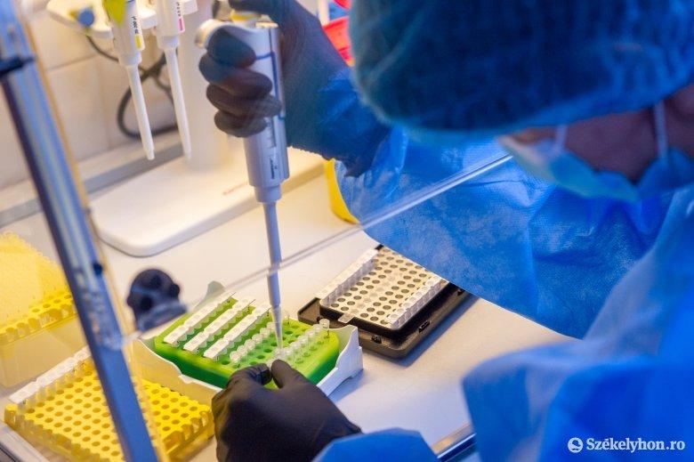 Az új fertőzések száma nőtt, halálesetek nem történtek Hargita megyében