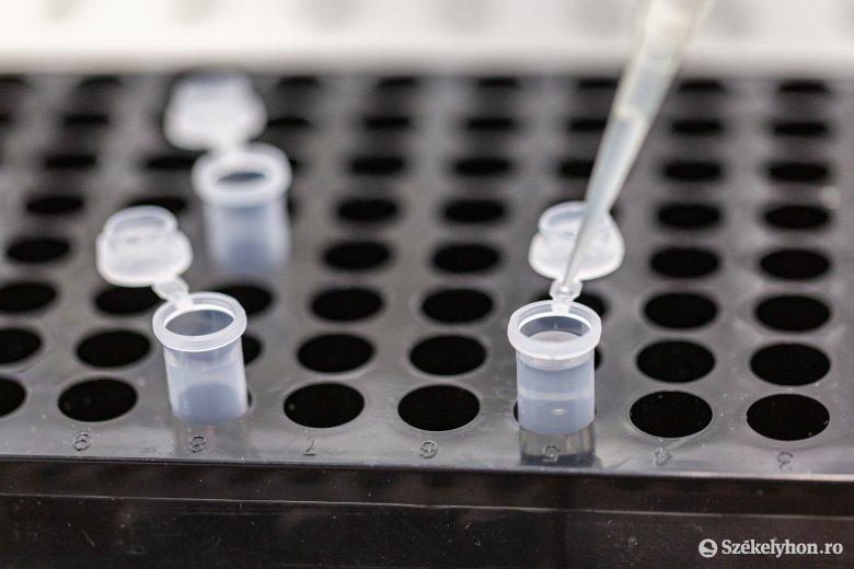 Nyolcezer fölött a fertőzöttek száma, két új eset Hargita megyében