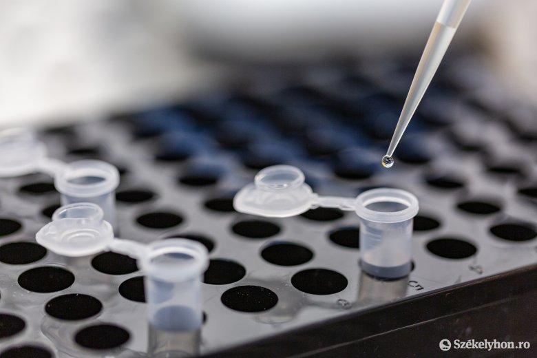 Újabb kilenc fertőzöttet azonosítottak Hargita megyében