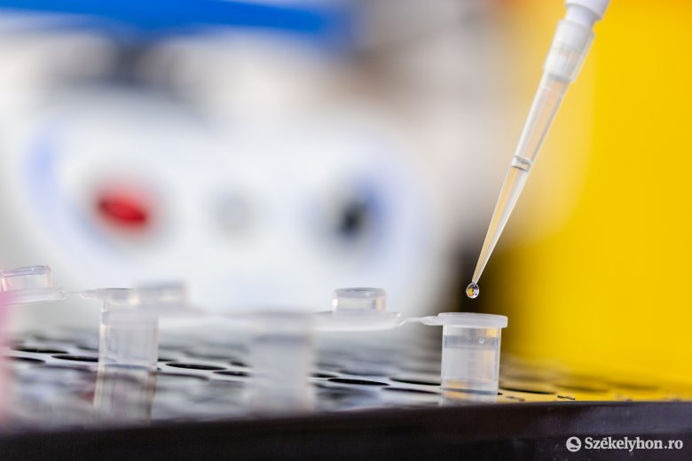 A fertőzöttek száma nőtt, az aktív eseteké viszont csökkent Hargita megyében