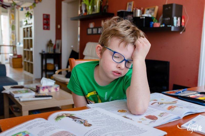 Nem a színjeles a mérce: a jól tanulás tanulhatósága