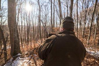 Elhunyt az orvvadászat közben fejbe lőtt Bihar megyei erdész