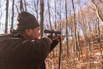 """Szakminisztériumi """"fogságban"""" a vadgazdálkodás: térítésmentesen kell ellátniuk a közfeladatokat a vadászegyesületeknek"""