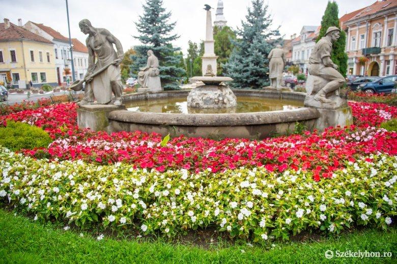 Csaknem egész évben van munka a köztéri virágokkal