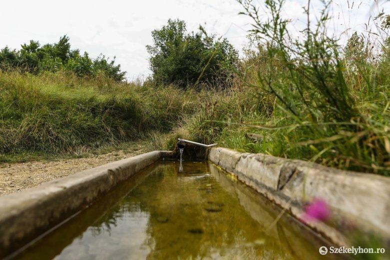 Még egy vizsgálat a biztonság kedvéért: iható a népszerű forrás vize