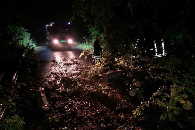 Autóra és útra dőltek fák Székelykeresztúr térségében