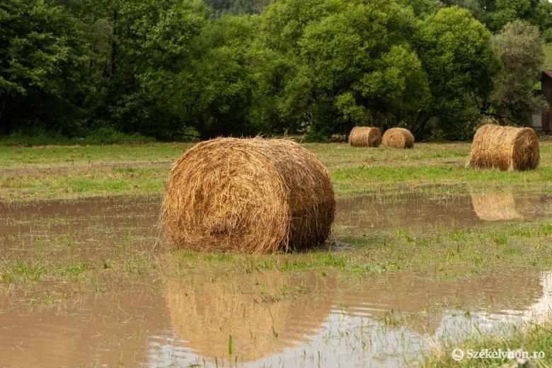 Elsőfokú árvízriasztást adtak ki Hargita, Kovászna és Bákó megyére