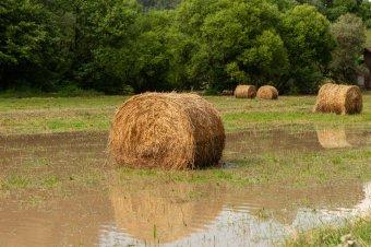 Másodfokú árvízkészültséget rendeltek el több erdélyi folyószakaszon