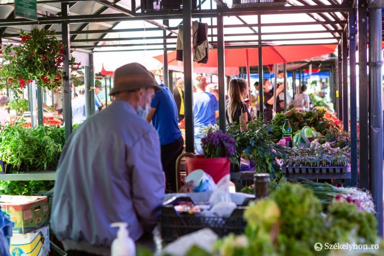 Palánták és friss zöldségek a székelyudvarhelyi piacon