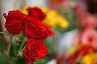 Bezzeg Antalné virágai…