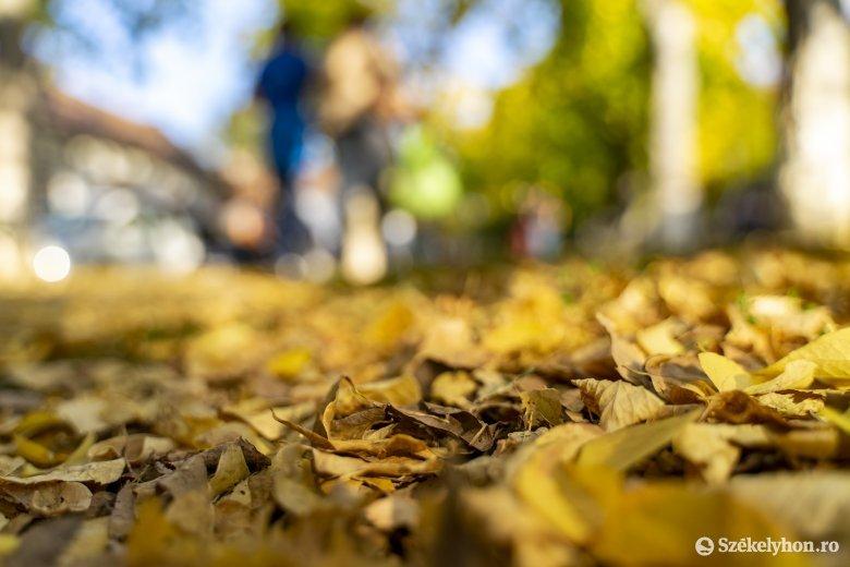 Szokatlanul meleg időjárásra számíthatunk novemberben