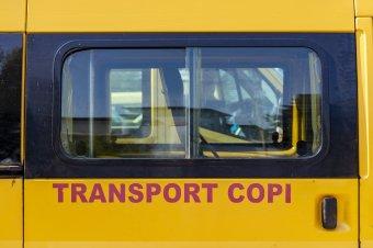 Ingyenesen buszozhatnak nagyvárosokban az elemi osztályosok 2022 őszétől