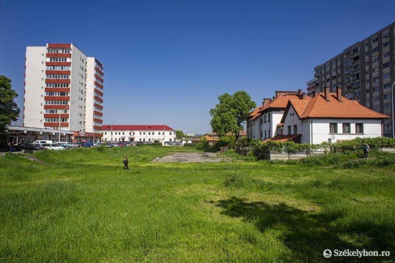 Közvitát tartanak a parkba építendő tömbházról