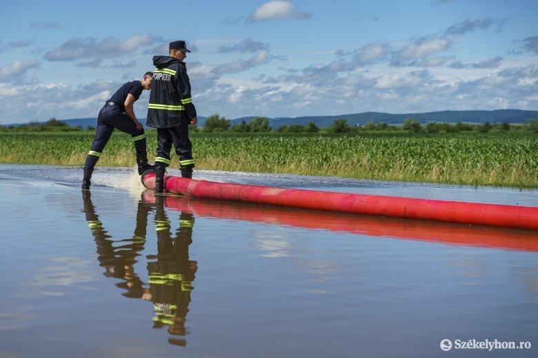 Kedvező hatása is volt Hargita megye mezőgazdaságára a hetekig tartó szüntelen esőzésnek