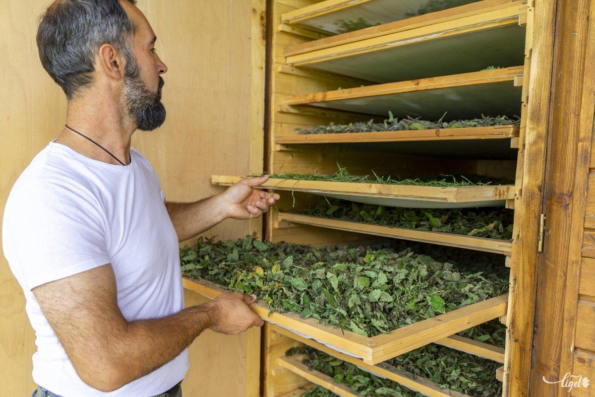 Az önerőből és fantáziából épített növényszárítójuk •  Fotó: Haáz Vince